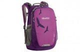 Boll Falcon 20l boysenberry/purple